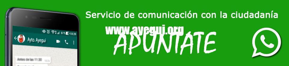 Servicio-de-comunicación-con-la-ciudadanía---APÚNTATE---Ayuntamiento-Ayegui